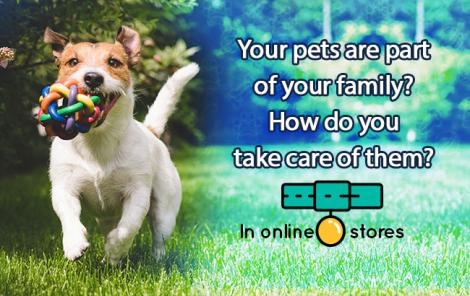 Our pets are very important to us. How can you best take care of them?